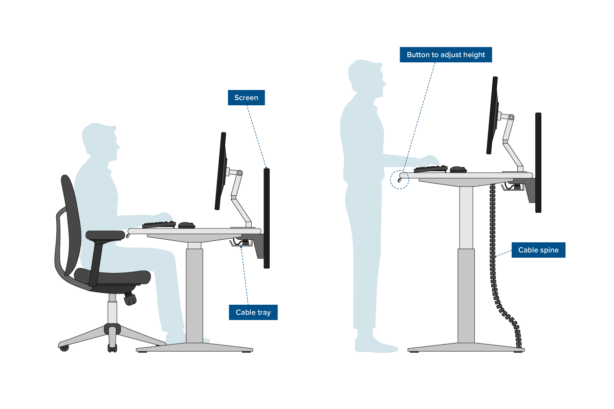 Picture of: Office Ergonomics What It Is And Why It Matters Cmd