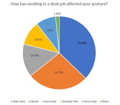 Posture Pie Chart